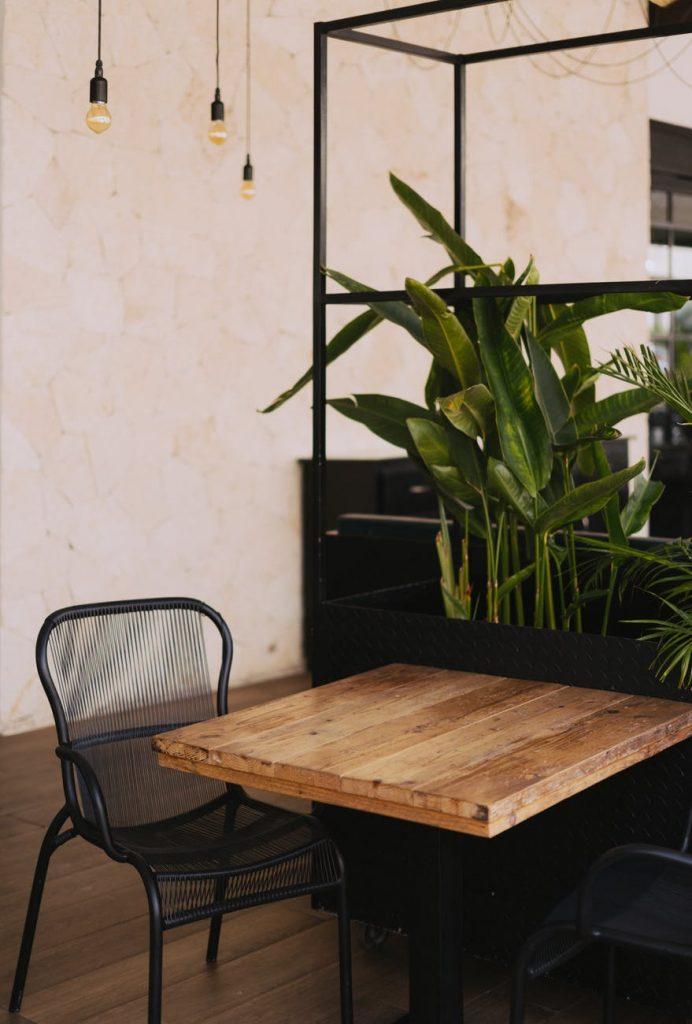 Table naturelle en bois avec une chaise vide. En arrière plan, des plantes vertes exotiques